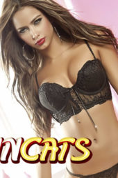 Cheap Adult Phone Chat at SINCats